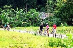 Cycling Tour full day in Hoi An