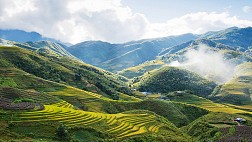 Sapa Adventure Trekking and Homestay 4Days/5Nights